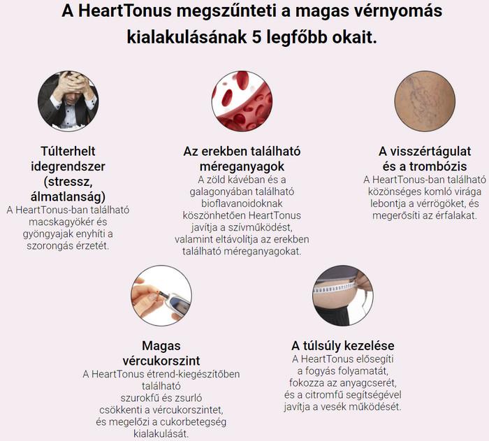 eletrevalogyerek.hu :: tanulmányok