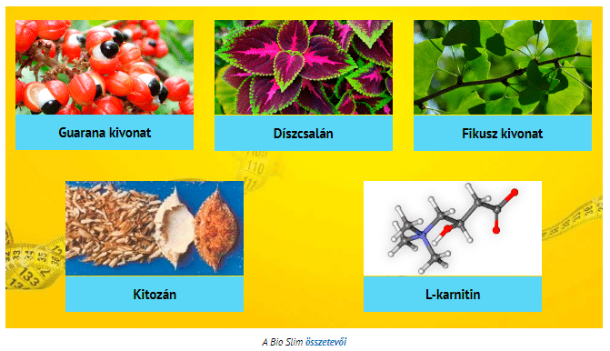 Bio Slim összetétele