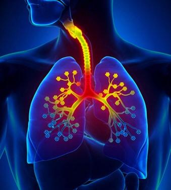 Detox Lungs प्राइस इन इंडिया